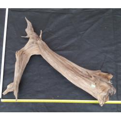 Rašelinový kořen č. 6