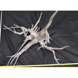Rašelinový kořen č. 12