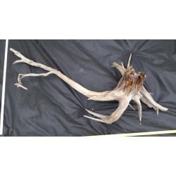 Rašelinový kořen č. 19