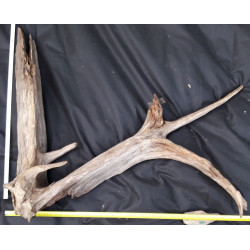 Rašelinový kořen č. 26