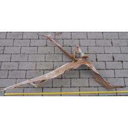 Rašelinový kořen č. 32