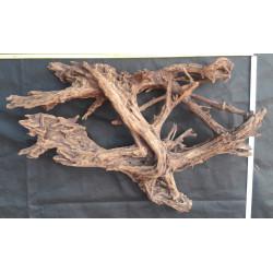 Mangrove střední č. 28
