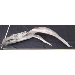 Rašelinový kořen č. 37