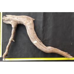 Rašelinový kořen č. 3