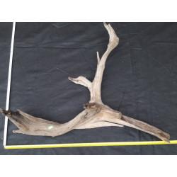 Rašelinový kořen č. 44