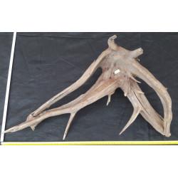 Rašelinový kořen č. 46