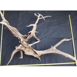 Rašelinový kořen č. 53