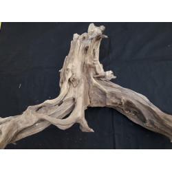 Rašelinový kořen č. 54