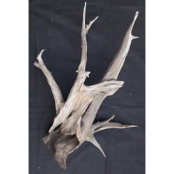 Rašelinový kořen č. 56