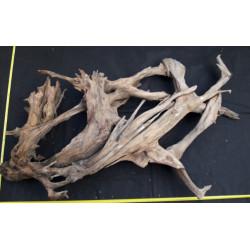 Rašelinový kořen č. 1