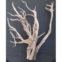 Rašelinový kořen č. 65