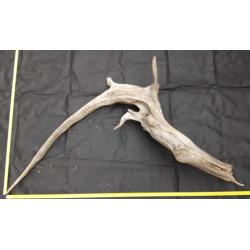 Rašelinový kořen č. 68